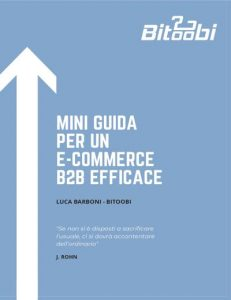 mini-guida-e-commerce-b2b