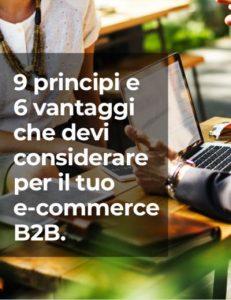 9-principi-6-vantaggi-e-commerce-b2b